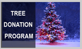 TreeDonationProgram